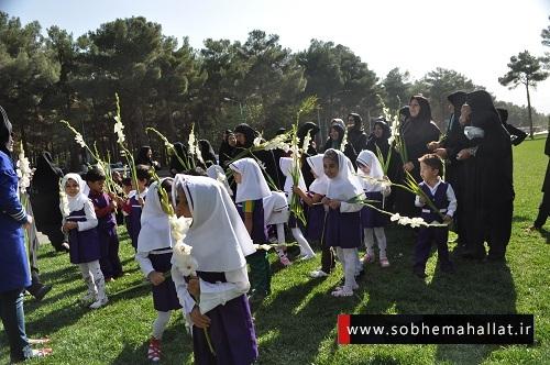 صبح محلات: جشنواره فرهنگی ورزشی سالمند